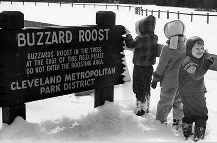 Children at the Buzzard Roost in Hinckley Reservation